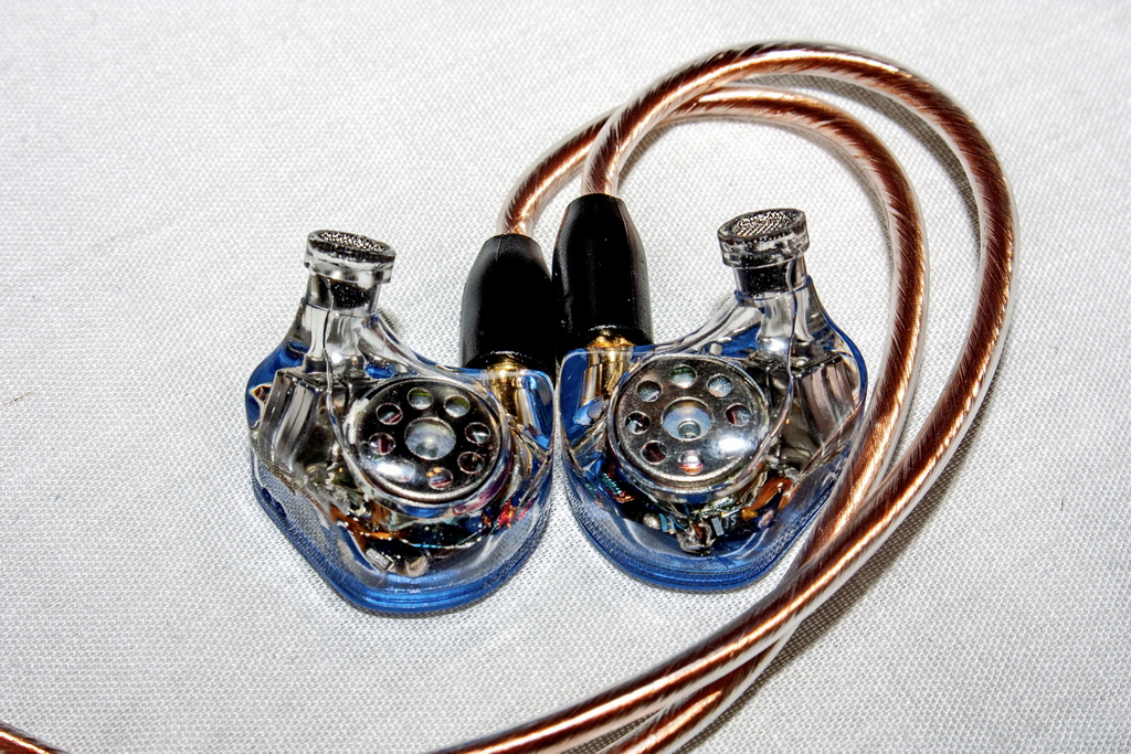 Rose-QT9-MK2-26_r.jpg