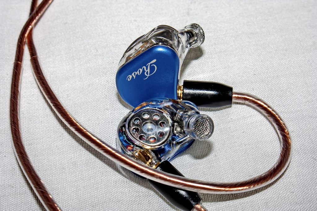 Rose-QT9-MK2-27_r.jpg